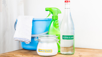 Green Cleaning Services Image